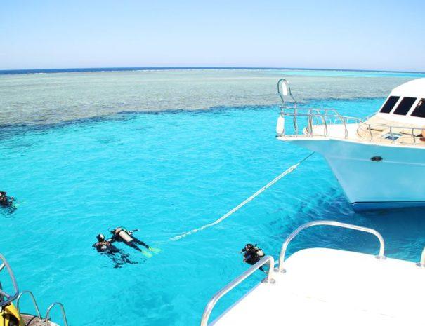Escursione immersioni Sharm el Sheikh
